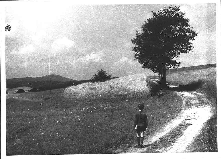 weifa_1954